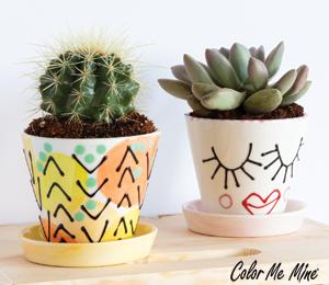 Tucson Mall Cute Planters